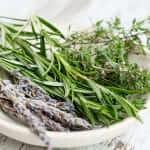 5 plantas medicinales para combatir el catarro