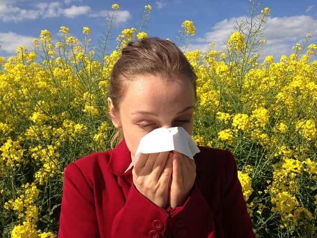 alergia primaveral polen